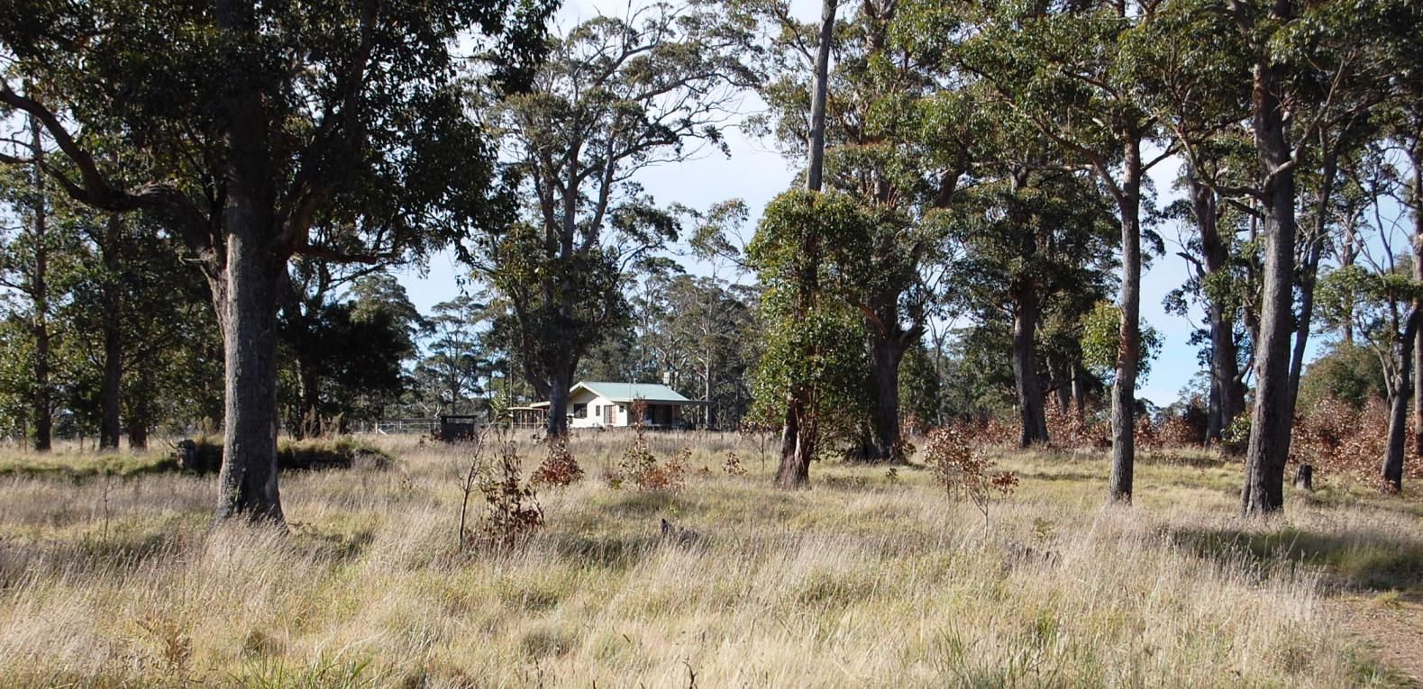 Cunnawarra Trail, Ebor NSW 2453, Image 2