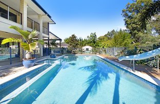 Picture of 81 Bridie Drive, Upper Coomera QLD 4209