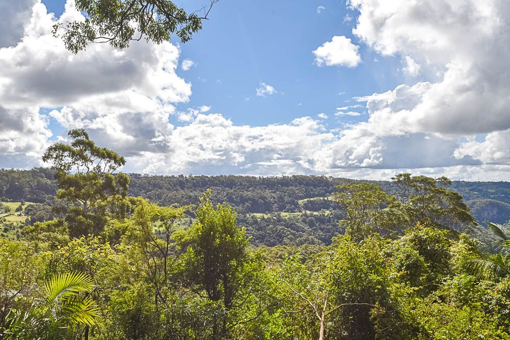 153 Alpine Terrace, Tamborine Mountain QLD 4272, Image 2