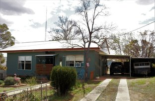 Picture of 51 Umang St, Tottenham NSW 2873