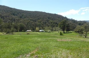 39 Lochiel Road, Lankeys Creek, Holbrook NSW 2644