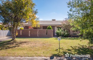 6 Torrensview Road, Athelstone SA 5076