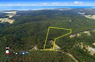 Picture of Lot 12 Rilys Road, Coolagolite NSW 2550