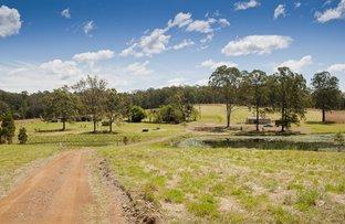 51 Loggers Way, Cedar Party NSW 2429