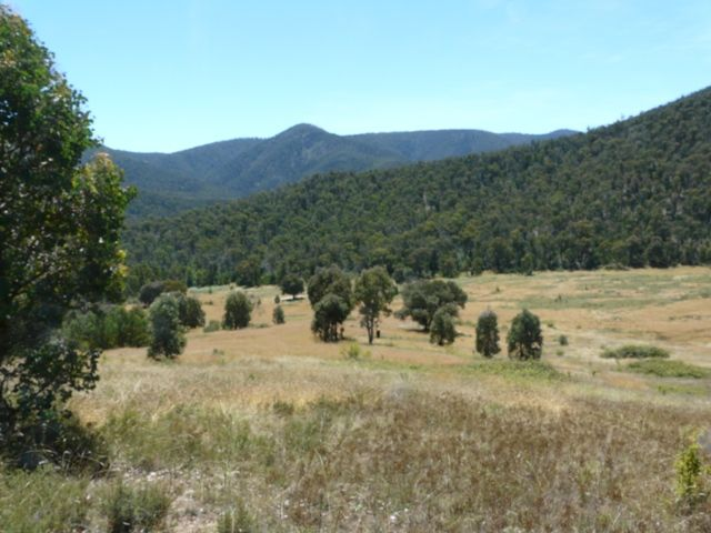 00 Scrubby Creek Track, Omeo VIC 3898, Image 1