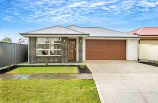 Picture of Lot 2, No. 11 Catalina Avenue, Parafield Gardens SA 5107