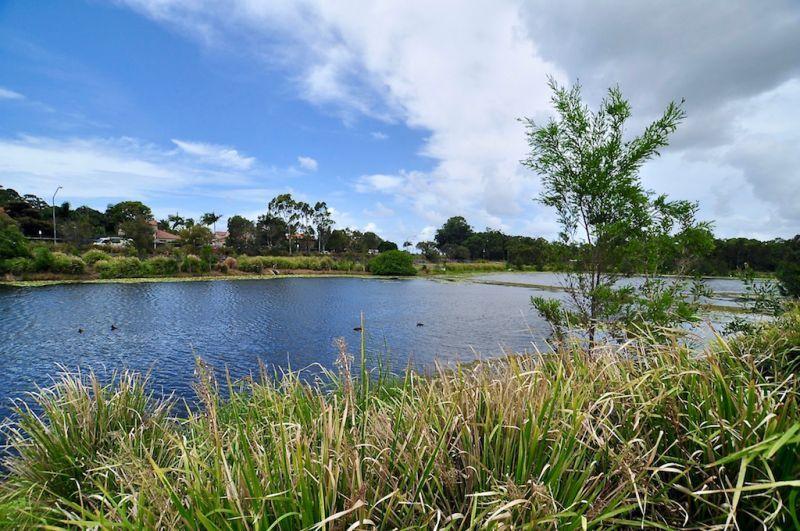39/2 Inland Drive, Tugun QLD 4224, Image 1