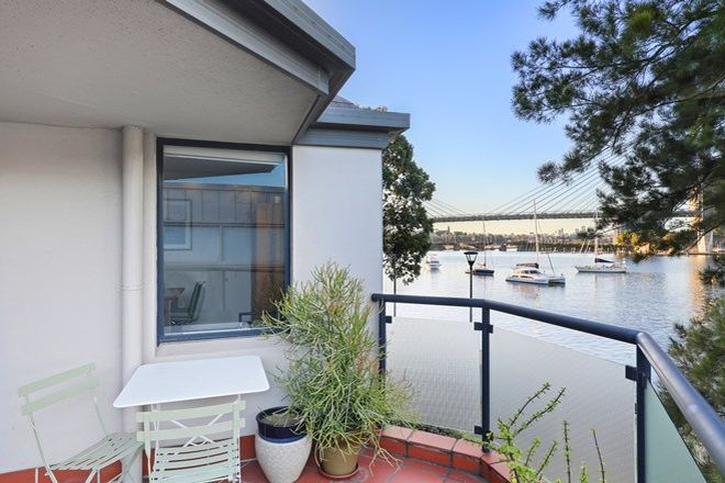 Picture of 22/29 Cook Street, GLEBE NSW 2037