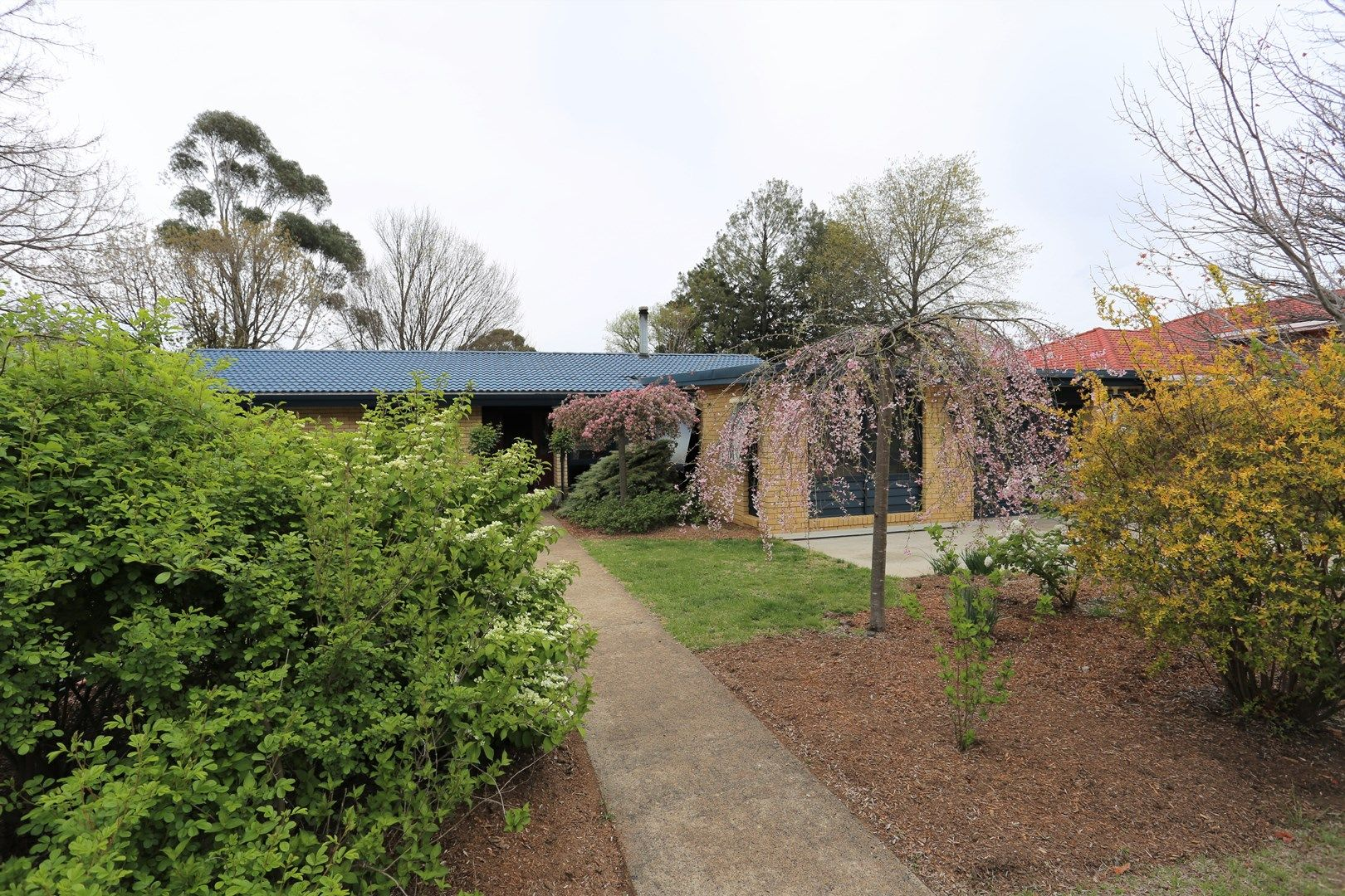33 Lynches Rd, Armidale NSW 2350, Image 0