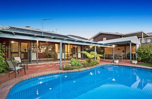 Picture of 18 Hakea Ave, Athelstone SA 5076