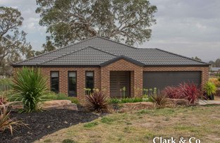 Picture of 7 Kate Court, Mansfield VIC 3722