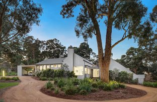 Picture of 7 Culla Hill, Eltham VIC 3095