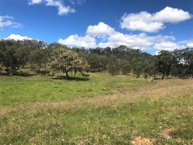 'Jardine'/266 Gum Gully Road Mebul, Gulgong NSW 2852, Image 2