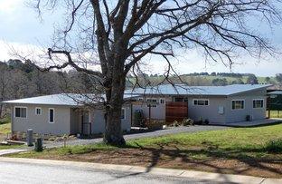 Picture of Ash Street, Dorrigo NSW 2453