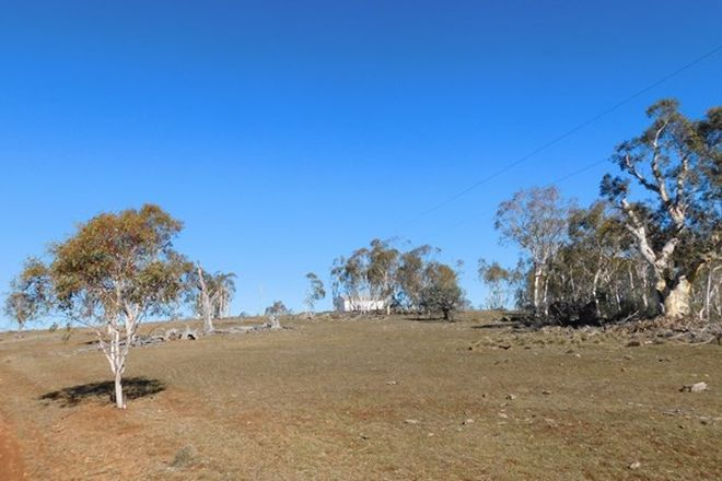 Picture of Caddigat Road, DRY PLAIN NSW 2630