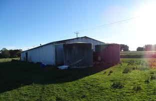 Picture of 4575 Princes Highway, Birregurra VIC 3242