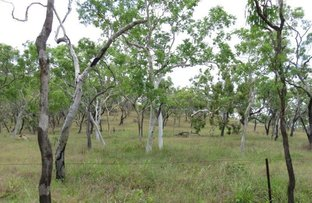 Picture of Mount Molloy QLD 4871