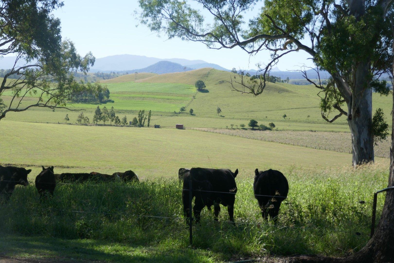 73 Gooleys Road, Kyogle NSW 2474, Image 2