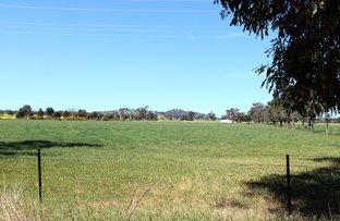 3150 Olympic Highway, Culcairn NSW 2660