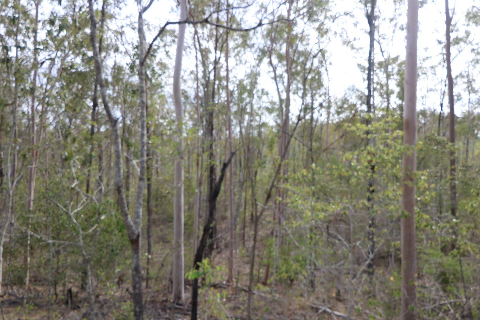 133/327 Berthelsens Road, Booyal QLD 4671, Image 1