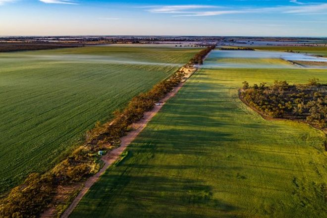 Picture of 310 Yarraby Road, SWAN HILL VIC 3585