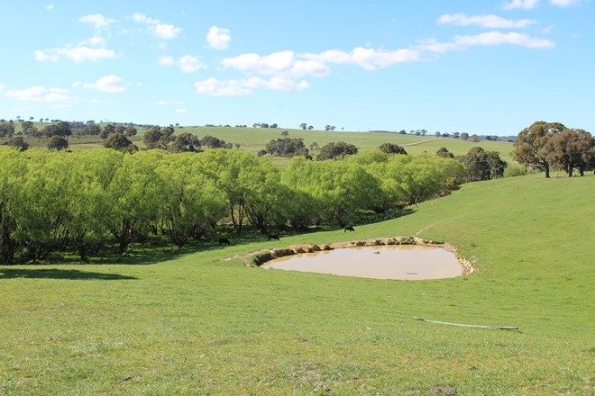 Picture of 2641 Burraga Road, BURRAGA NSW 2795