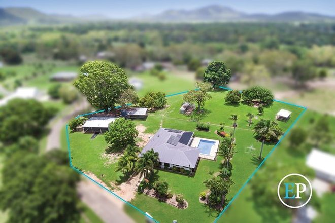 Picture of 10 Ashman Court, ALLIGATOR CREEK QLD 4816