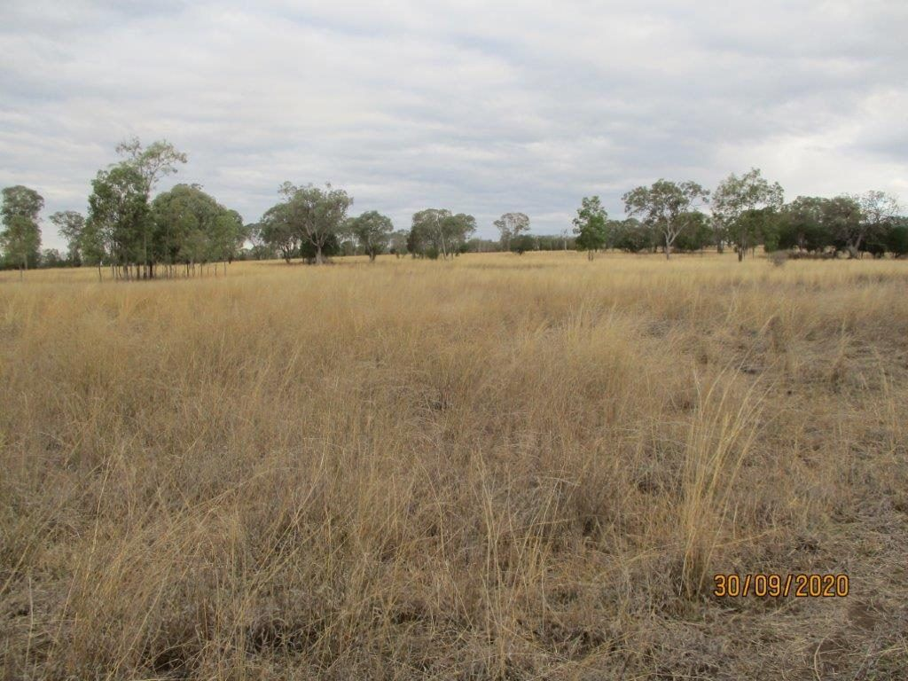 848 ACRES GRAZING, Bell QLD 4408, Image 1