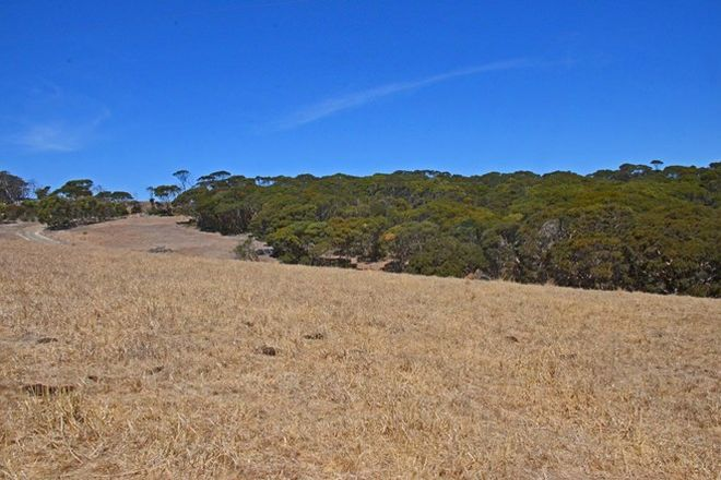 Picture of Lot 10 Cape Willoughby Road, PENNESHAW SA 5222