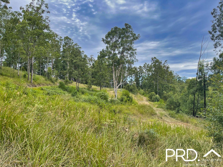 2605 Afterlee Road, Toonumbar via, Kyogle NSW 2474, Image 2