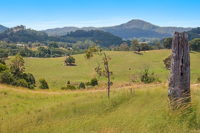 Picture of 303 Stokers Road, STOKERS SIDING NSW 2484