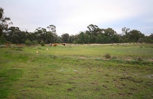 Picture of 11376 Newell Highway, Narrabri NSW 2390