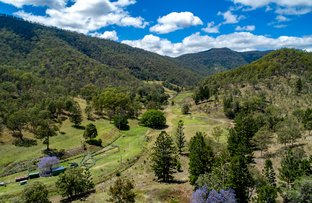 Picture of 1214 Duck Creek Road, Kerry QLD 4285