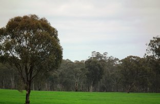 Picture of 2107 (Lot 5) Northwood Road, Nagambie VIC 3608