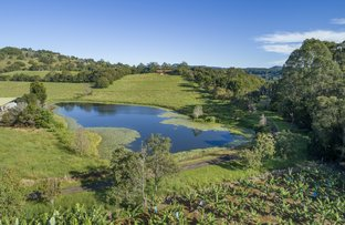 Picture of 840 Terranora Road, Bungalora NSW 2486