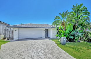 Picture of 3 Isetta Court, Upper Coomera QLD 4209