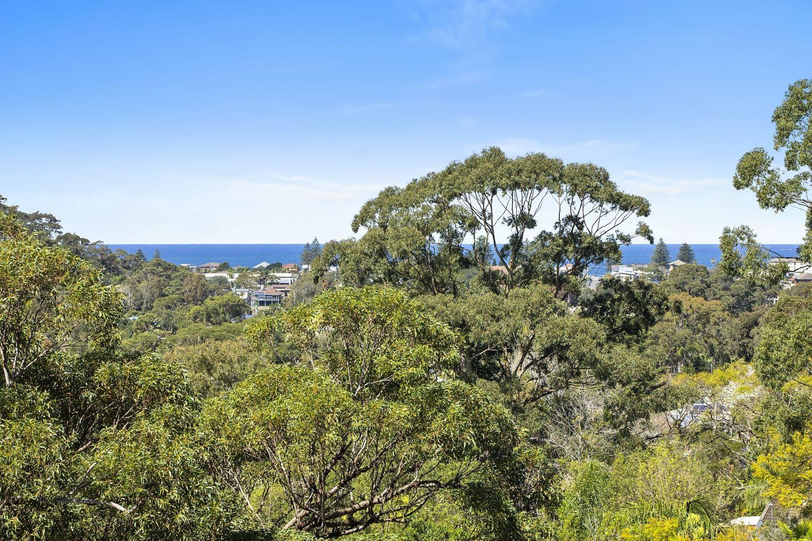149 Rickard Road, North Narrabeen NSW 2101, Image 2