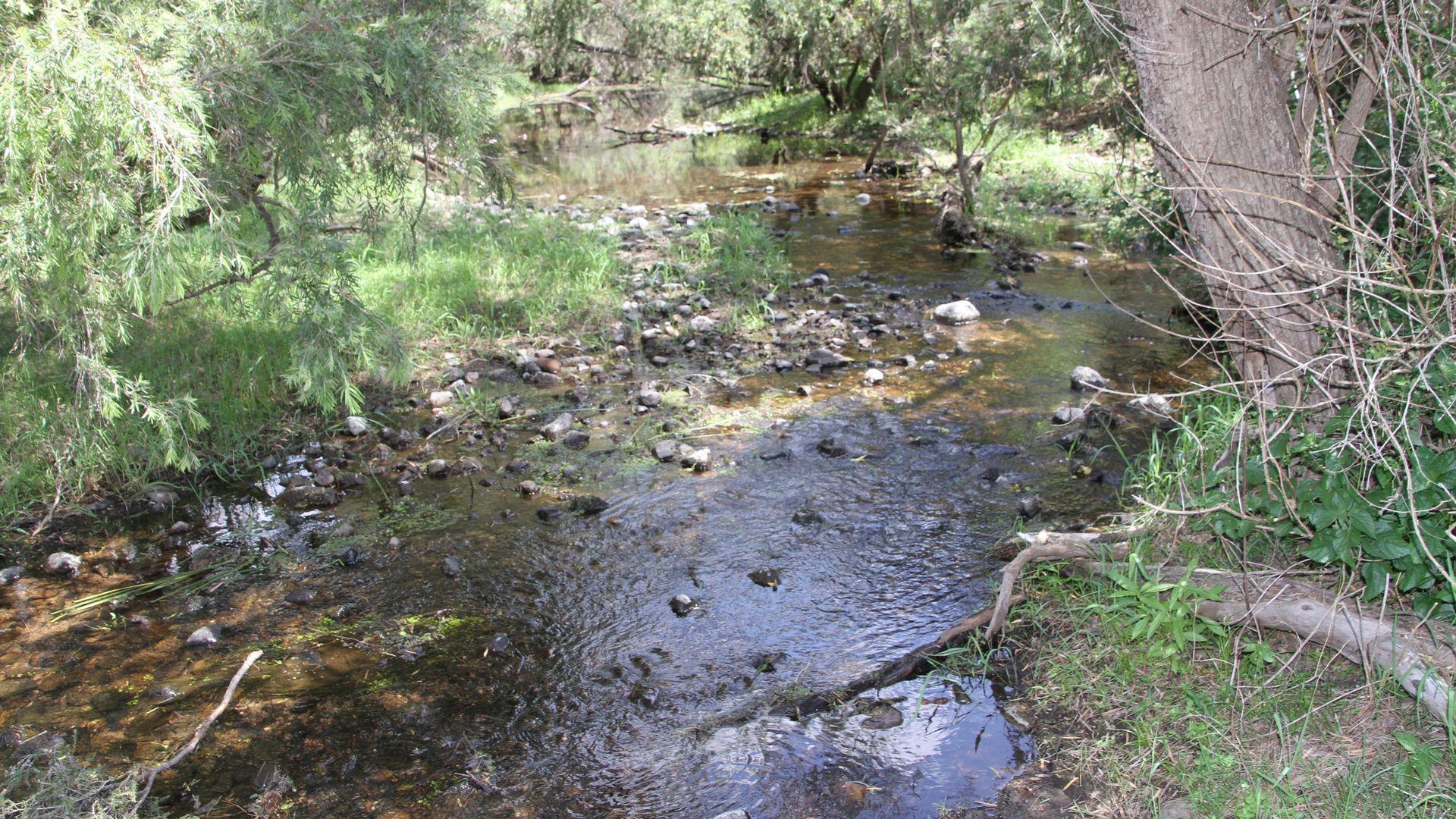 Biarra QLD 4313, Image 2