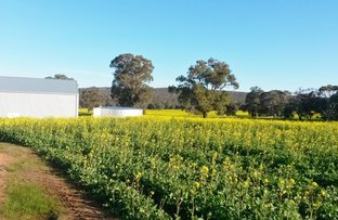 Picture of Lot 106 Berry Brow Rd, Bakers Hill WA 6562