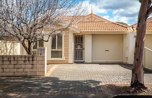 Picture of 10 Meadow Avenue, Campbelltown SA 5074