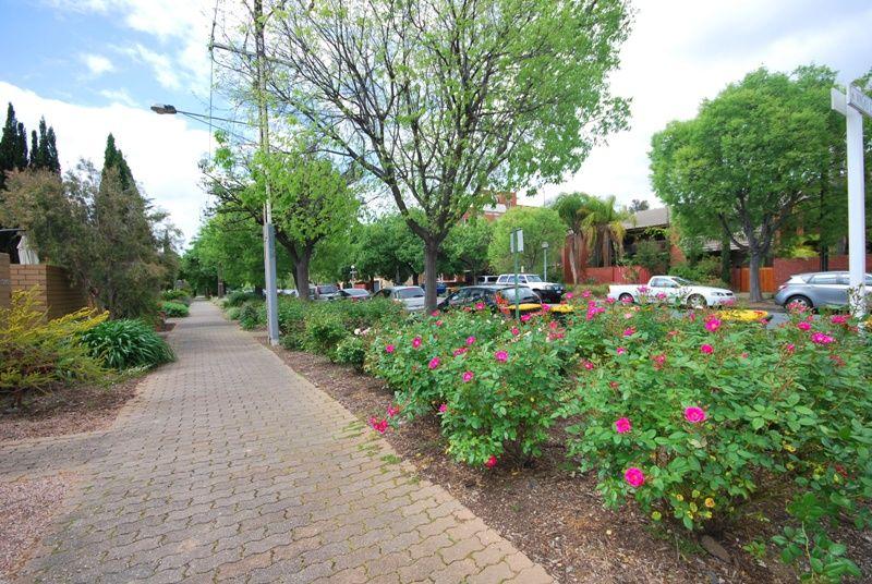 3/326 Angas Street, Adelaide SA 5000, Image 1