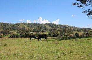 Picture of 851 Wang Wauk Road, Wang Wauk NSW 2423