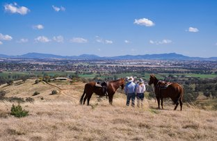 """Picture of """"Mountain Valley"""" Eloura Road, Tamworth NSW 2340"""