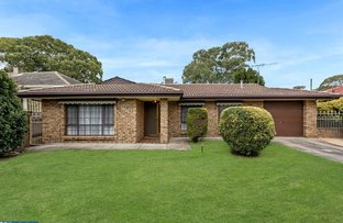 Picture of 4 Sandford Street, Tea Tree Gully SA 5091