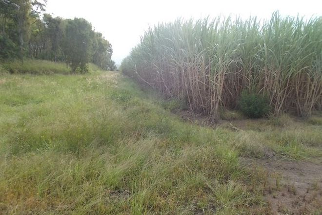 Picture of 47219 Bruce Highway South, BAMBAROO QLD 4850