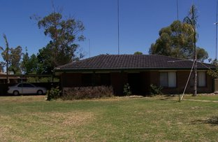 Picture of 2 Sandpiper St, Coleambally NSW 2707