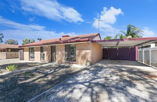 Picture of 6 Turtur Drive, Paralowie SA 5108