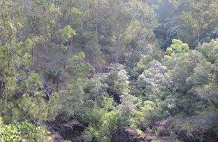 8 Mud Flat Road, Drake NSW 2469