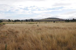 Picture of 198 ACRES MOOLA SCRUB COUNTRY, Dalby QLD 4405