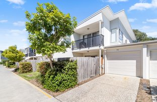 Picture of 113/8 Starling Street, Buderim QLD 4556